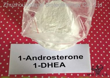 China Fetter Verlust Prohormones 1 Dhea-Pulver, 1 Andro Prohormone für mageren Muskel 76822-24-7 distributeur